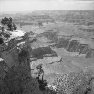 USA 05 - Grand Canyon 6407-1